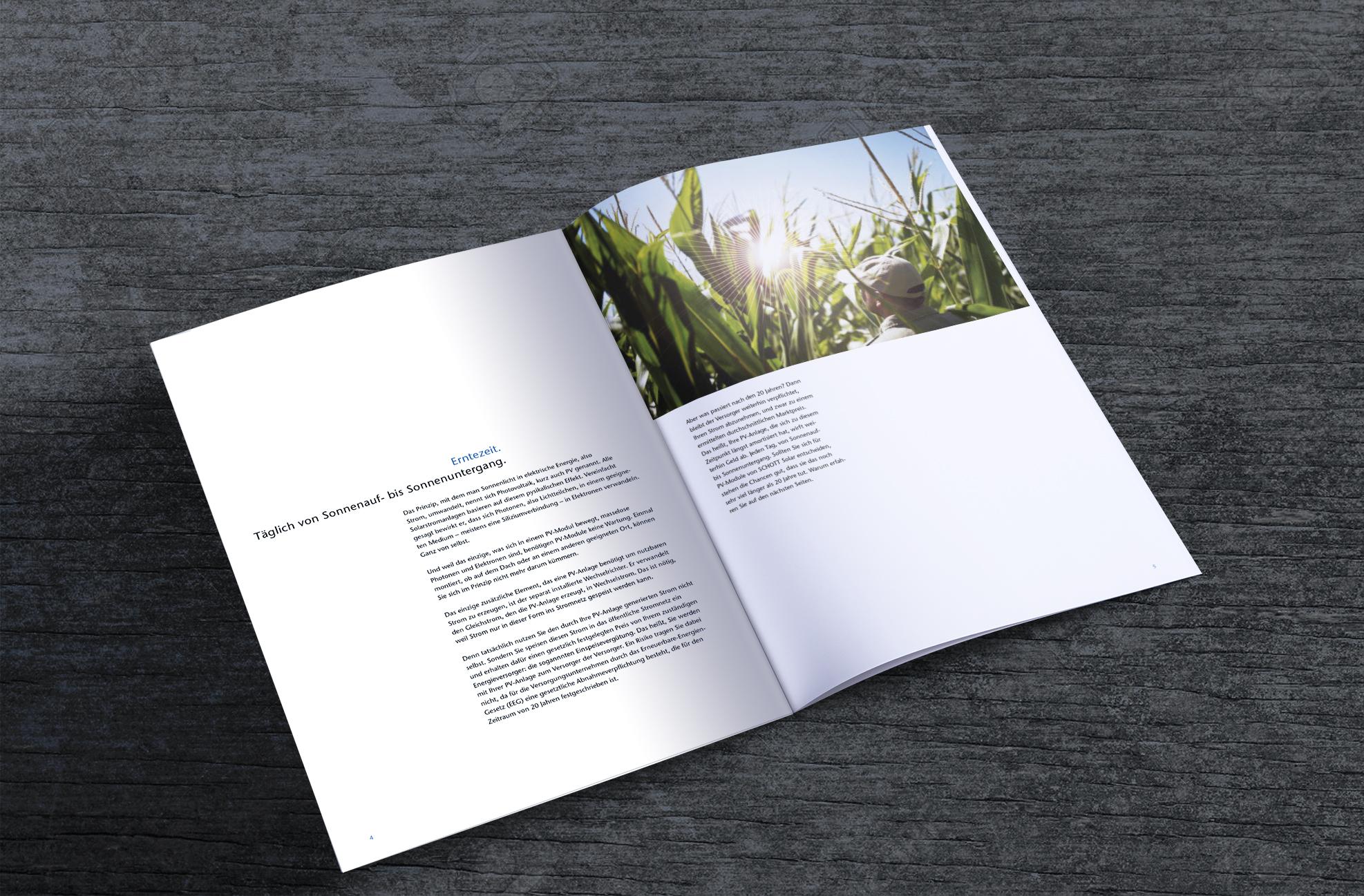P_Brochure3-4