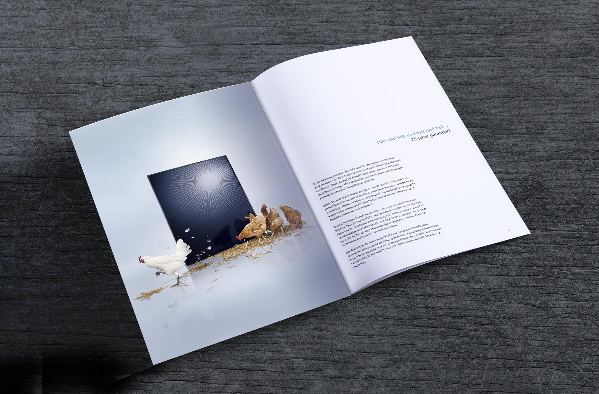 P_Brochure4-5